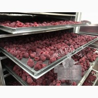 Инфракрасные промышленные шкафы для сушки фруктов, овощей, прочего