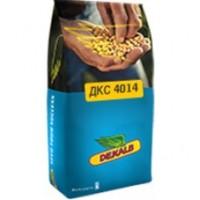 Семена кукурузы Монсанто ДКС4014