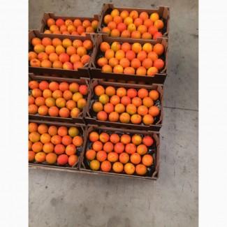 Хурма и фрукты из Испании