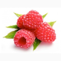 Робота !!! Збір ягоди малини