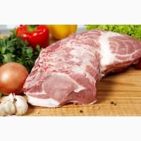 Производство и Продажа Свинины-Говядины