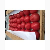 Реализуем оптом помидоры доставка продажа