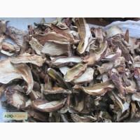 Продам білий сушений(на дровах) гриб