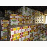 Продам банановые ящики и ящик пластиковый скалдной ОРТУС