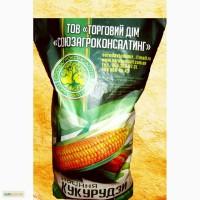 Продам кукурузу Солонянский 298 СВ ФАО 290