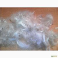 Продам гусиное пух перо