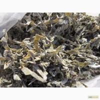 Ламинария(морская капуста) простая/сублимированная. Китай