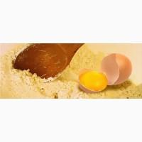 Яичный порошок - Украина