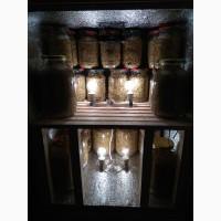 Продам табак, Virginia gold (Вирджиния голд), импотр из Молдовы