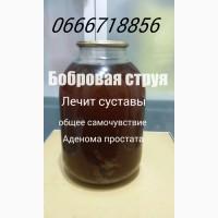 Продам бобровую струю, 500 мл Украина