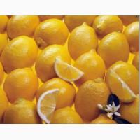 Закупаем лимоны, цитрусовые в ассортименте