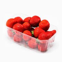 Пинетки (лоточки) для ягод и грибов