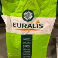 Семена подсолнечника EURALIS ES FLORIMIS/Евралис Флоримис