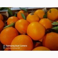 Апельсини з Іспанії