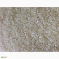 Продам рисовую крупу