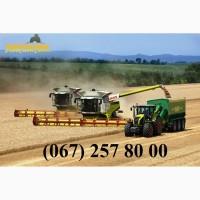 Предоставляем в долгосрочную аренду сельхозтехнику на уборку зерновых и масличных культур