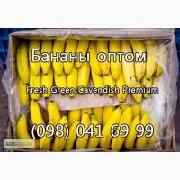 Продаем бананы оптом от поставщика. Лучшие цены, отличное качество