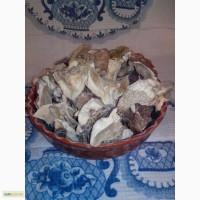 Гриби білі сушені - Грибы белые сушеные - Карпаты