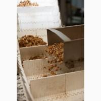 Услуги сортировки, Sortex, очищенный грецкий орех