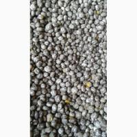 Продам насіння люпину