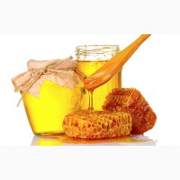 Закупаем мёд оптом