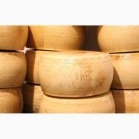 Продам сыр импорт (Италия, Германия, Франция, Польша, Польша, Литва, Дания, Голландия)