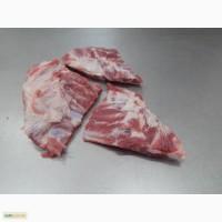 Перо свиное
