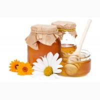 Куплю мед соняшниковий