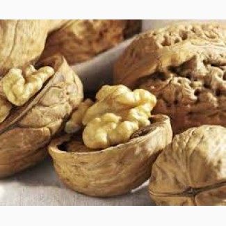 Принимаем заказы на ядро грецкого ореха свежего урожая