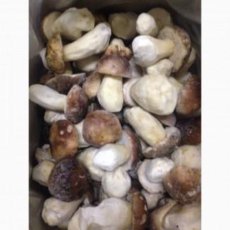 Продам гриб білий швидко заморожений