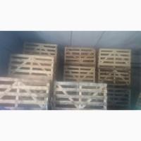 Продам контейнери для зберігання капусти