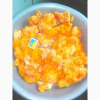 Продам гриб латипурус (трутовик серно-желтий) сушеный 2021 г сбора