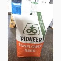 Продам насіння кукурудзи та соняшника