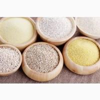 Організація постійно купляє Продукцію борошномельно-круп#039;яної промисловості