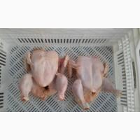 Производитель продает тушку суповой курицы, тушку бройлера, субпродукты куриные