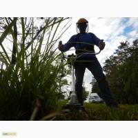 Покос травы, удаление бурьяна, стрижка газонов
