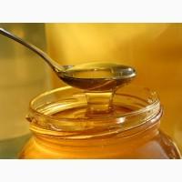 Продам мед оптом (акация, липа, лесное разнотравье)