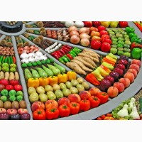 Продам семена овощей от производителей ОПТОМ ! Огурец, кабачок, морковь, капуста, редиска