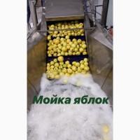 Лінія сортування і переробки ягід і фруктів