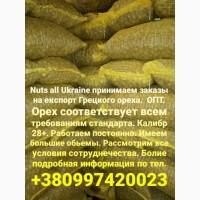 Грецкий орех на експорт