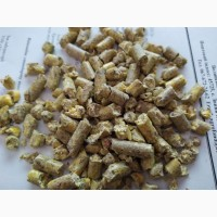 Крупа кукурудзи перед гранулюванням