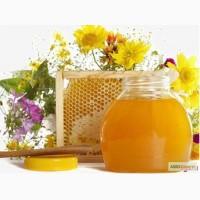 Покупаем мёд, на территории всей Украины.По высоким ценам
