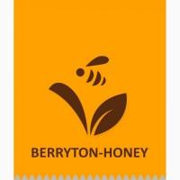 Купуємо мед та продукти бджільництва