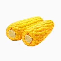 Закупаем Кукурузу