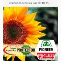 Семена подсолнечника П64ЛЕ25, (Экспресс Сан) Pioneer