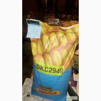 Семена Monsanto (Монсанто) кукуруза Dekalb. ОРИГИНАЛ