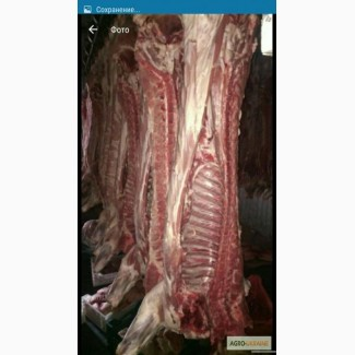 Мясо полотуші Врх Свинина
