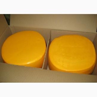Продам сырный продукт оптом