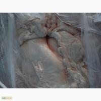 Продам жир сырец свиной со склада г Киев