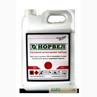 Продажа гербицидов Норвел, хизалофоп-п-етил 50 г/л (Тарга Супер) против злаковых сорняков